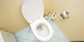 Teaser Toilette WC Klo